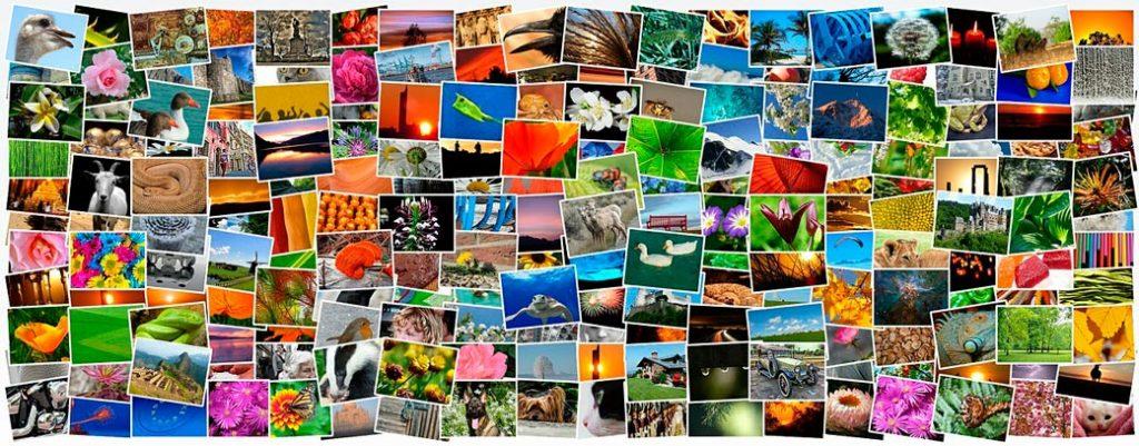 Catálogo fotográfico de las agencias de microstock